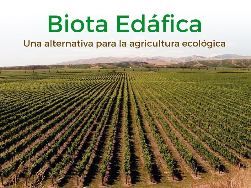 Artículo Biota Edáfica